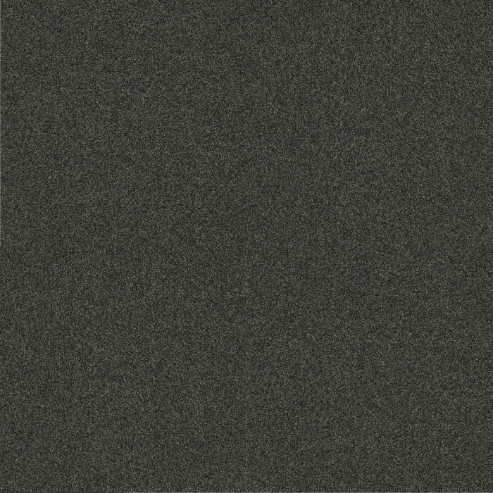 Paklāji - Outlet POLICHROME STIPPLE GREY 4265038